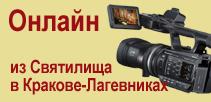 Веб-камера Онлайн из Святилища В Кракове-Лагевниках